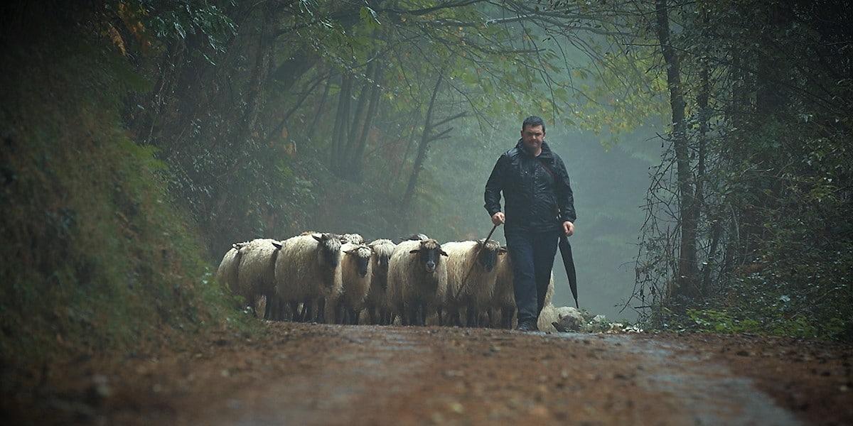 """""""Pastoreak"""" Bilbao Mendi Film"""