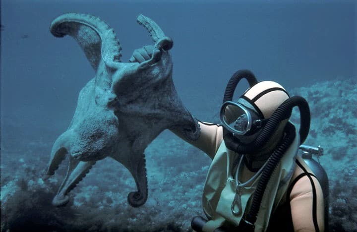 Eduard Admetlla pionero del submarinismo