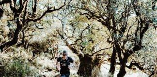 Pau Capell Trail de Porto Moniz