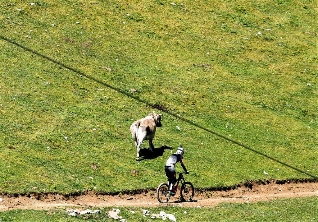 La Molina desafíos montaña estaciones FGC