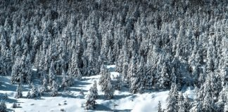 Grandvalira Ordino-Arcalís medidas anti-COVID-19 invierno 2020-2021