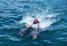 Cancún nadar delfines Isla Mujeres