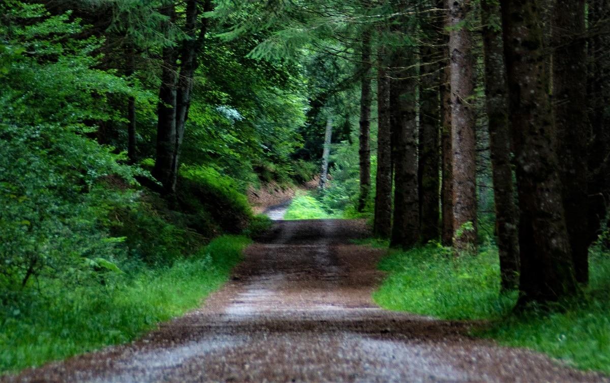 espacios naturales medidas regular acceso
