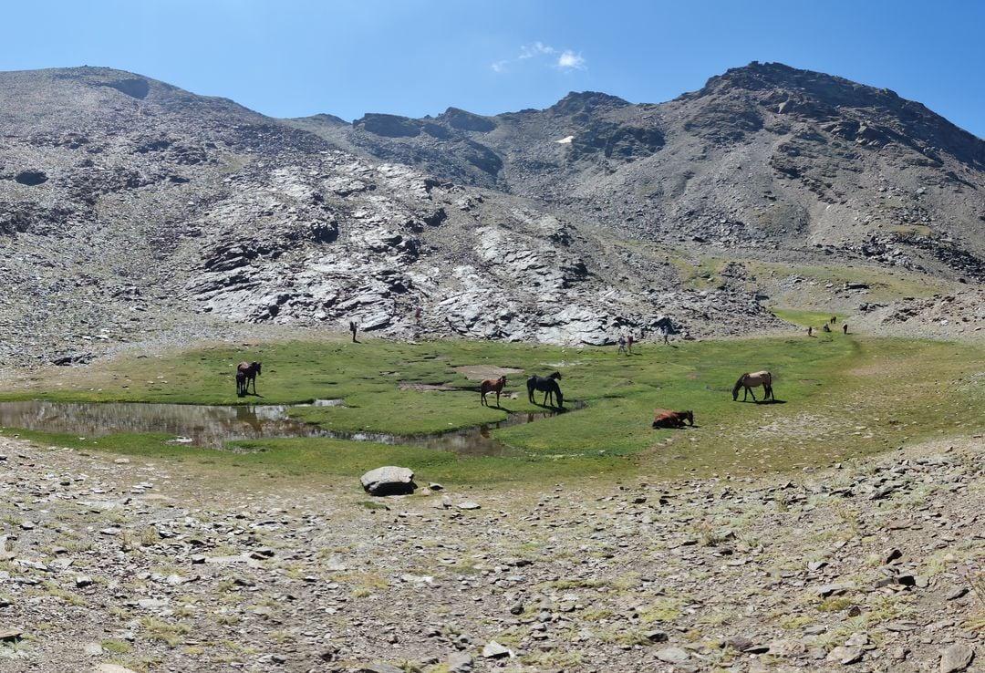 Sierra Nevada senderismo